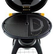 barbecue Bugg