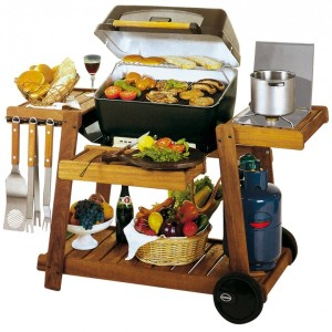 Barbecue Style 2200